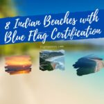 What is Blue Flag Certification, Explained